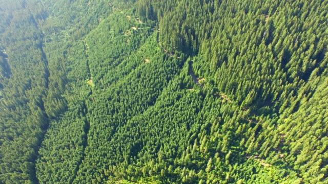 Aerial Oregon Mt Jefferson