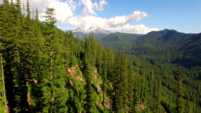 aerial oregon mt jefferson - antenna aerial stock videos & royalty-free footage