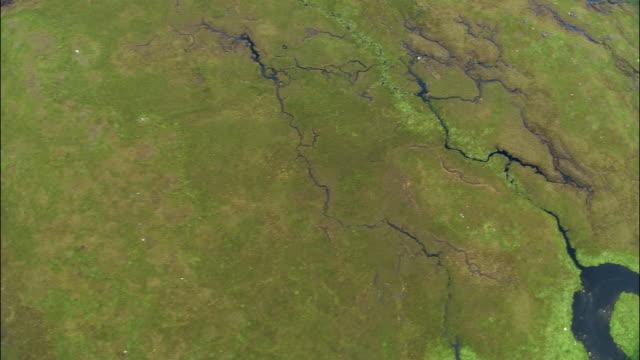 vídeos de stock e filmes b-roll de aerial over bog in rannoch moor in scottish highlands / scotland - lamaçal
