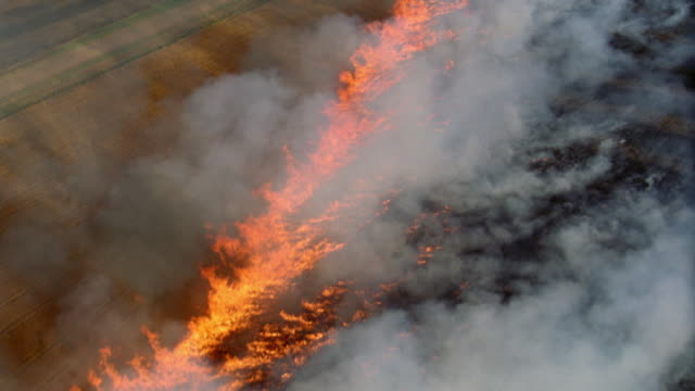 aerial over burning farmland w/smoke rising - 環境問題点の映像素材/bロール