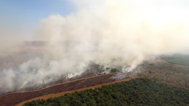 aerial over bush fire, smoke rising through the scrub - incendio video stock e b–roll