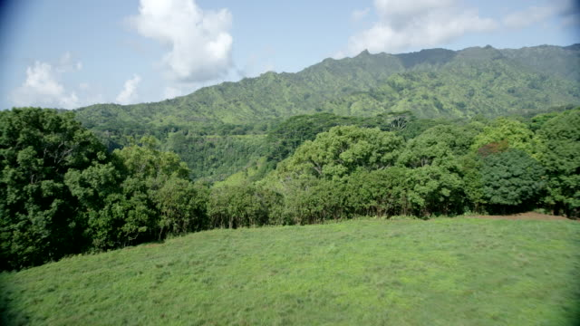 aerial over clearing to valley ridge, kauai, hawaii - カウアイ点の映像素材/bロール