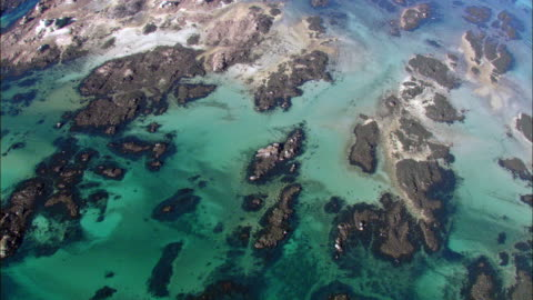 aerial over coast at low tide, jersey, uk - 干潮点の映像素材/bロール