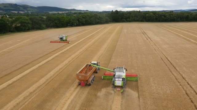 aerial over combine harvester pouring grain, uk - agricultural machinery stock videos & royalty-free footage