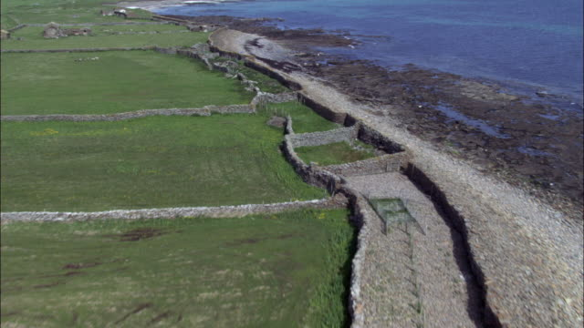 aerial over fields, coast and sheep on north ronaldsay, orkney, scotland - north stock videos & royalty-free footage