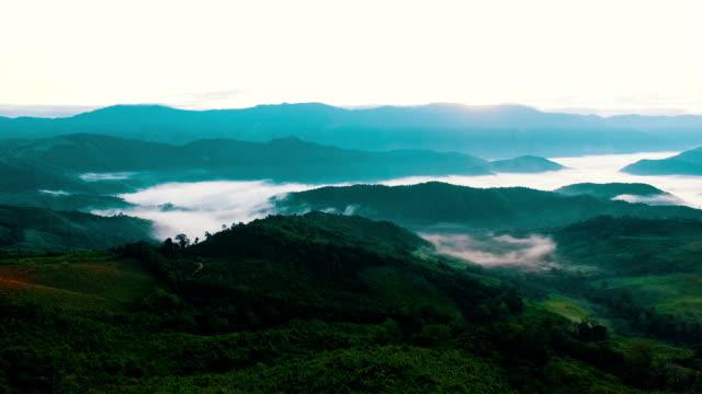 Luftaufnahmen über Wald und Hügel.