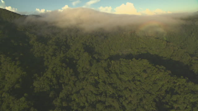 Aerial over forested hillside with circular rainbow in clouds.