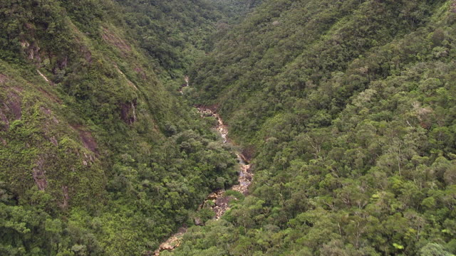 Aerial over forested river valley, Madagascar