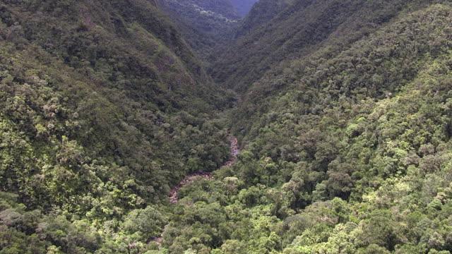 aerial over forested river valley, madagascar - madagaskar stock-videos und b-roll-filmmaterial