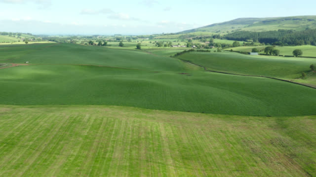 aerial over hills, fields and countryside, cumbria, uk - anhöhe stock-videos und b-roll-filmmaterial