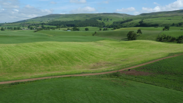 aerial over hills, fields and countryside, cumbria, uk - collina video stock e b–roll