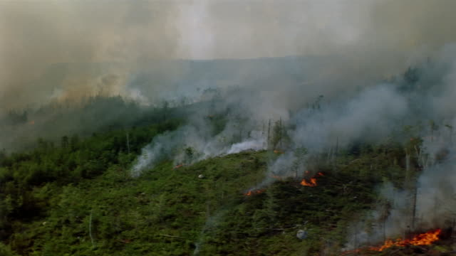 vídeos de stock e filmes b-roll de aerial over large forest fire in northwestern canada - acidente natural