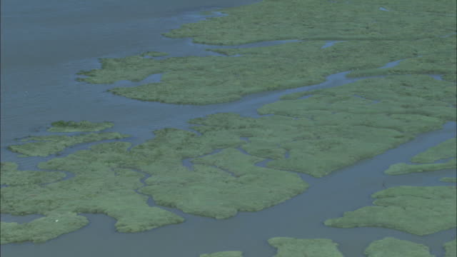 Aerial over marshes off Canvey Island, Essex, UK