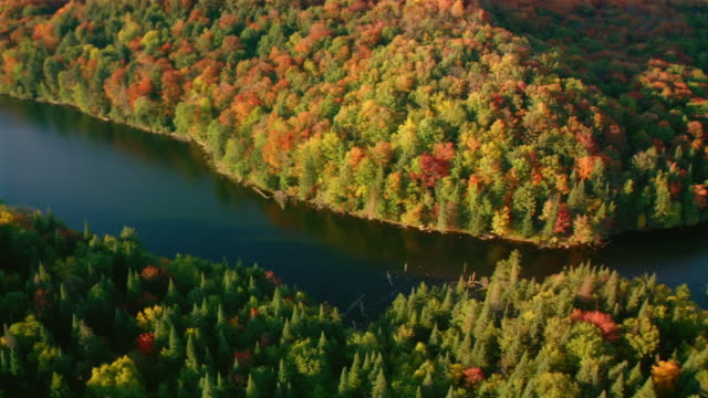 Aerial over narrow lake in autumn / Ontario