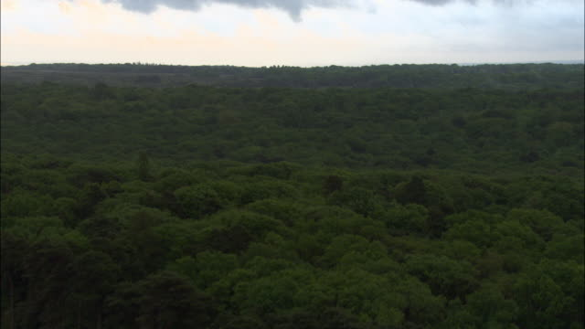 aerial over new forest, hampshire, uk - twilight stock videos & royalty-free footage