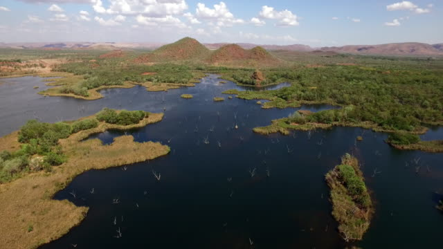 aerial over ord river swamp - river stock videos & royalty-free footage