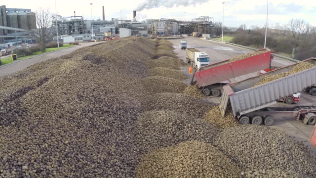 aerial over pile of sugar beet at sugar refinery, uk - raw food stock videos & royalty-free footage