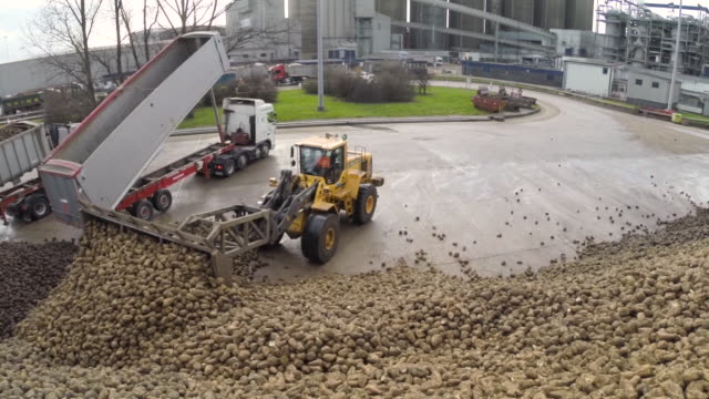 aerial over pile of sugar beet at sugar refinery, uk - large stock videos & royalty-free footage