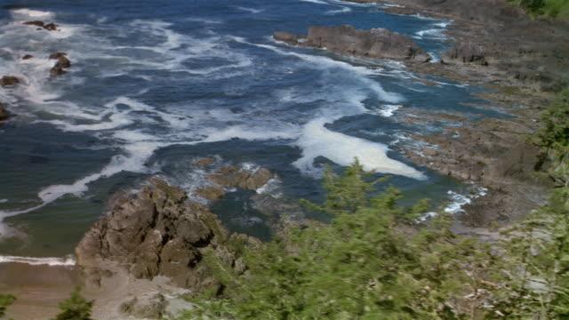 vídeos de stock, filmes e b-roll de aerial over pine trees on rocky coastline / northern california - pacífico norte