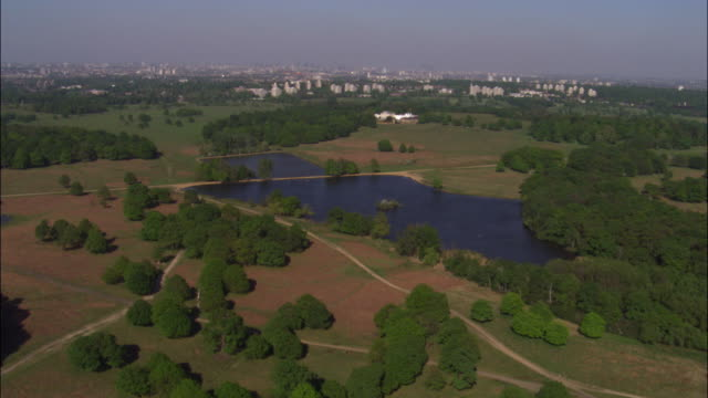 aerial over richmond park, london, uk - richmond upon thames stock-videos und b-roll-filmmaterial
