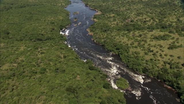 Aerial over river through forest, Uganda