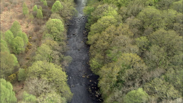 aerial over river through moorland, dartmoor, uk - devon stock videos & royalty-free footage