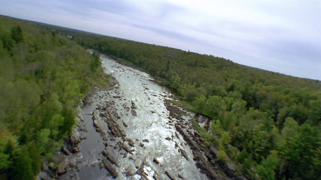 Aerial over river winding through forest / Minnesota