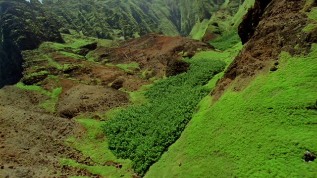 aerial over steep green mountains with stream running through valley / hawaii - insel kauai stock-videos und b-roll-filmmaterial