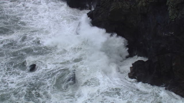 aerial over stormy sea crashing against cliff, cornwall, uk - small group of animals stock videos & royalty-free footage
