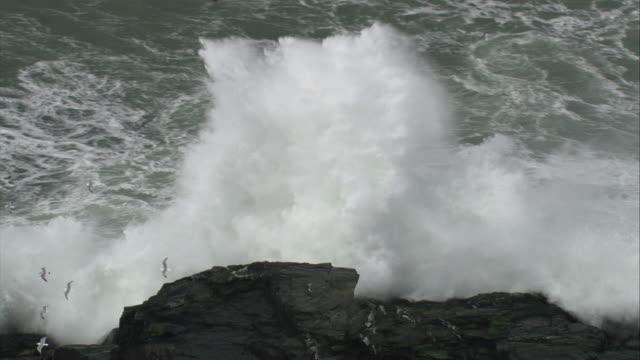 vídeos y material grabado en eventos de stock de aerial over stormy sea crashing against rocky islet, cornwall, uk - cornwall inglaterra
