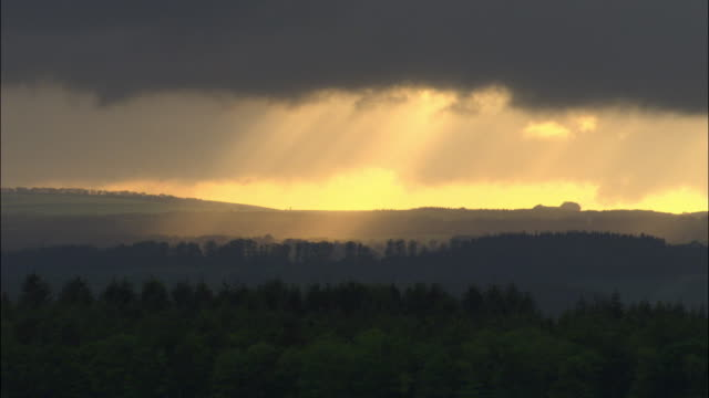 aerial over sunbeams on new forest, hampshire, uk - ray stock videos and b-roll footage
