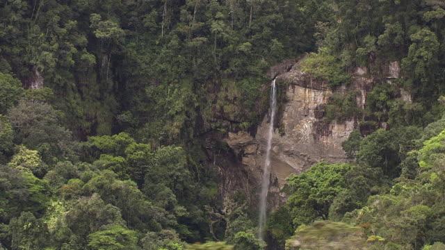aerial over tall waterfall in forest, madagascar - マダガスカル点の映像素材/bロール