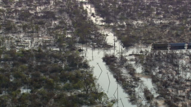 vídeos de stock, filmes e b-roll de aerial over telephone poles and trees in flooded streets / new orleans louisiana - 2005