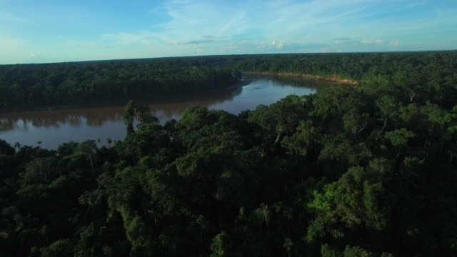 aerial over the tambopata river rainforest, 4k - rio delle amazzoni video stock e b–roll