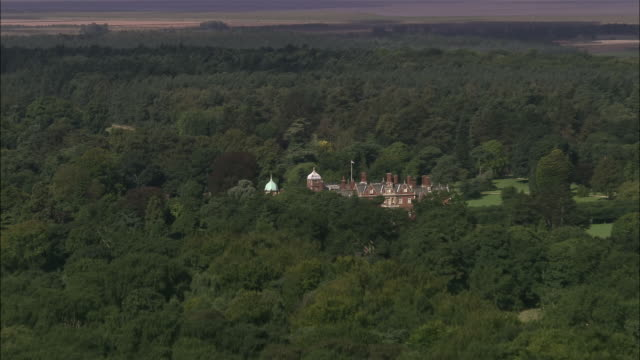 aerial over treetops to sandringham estate / norfolk, england - norfolk england stock videos & royalty-free footage