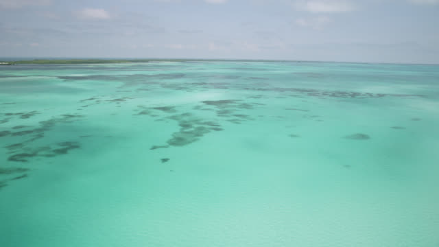 aerial over tropical caribbean sea and coast, belize - caribbean sea stock videos & royalty-free footage