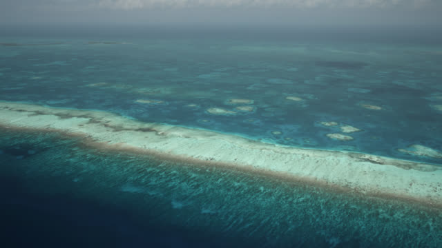 aerial over tropical caribbean sea and coral reefs, belize - caribbean sea stock videos & royalty-free footage