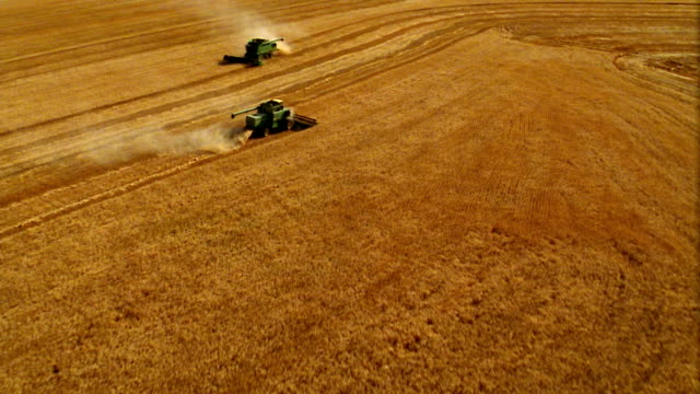 Aerial over two combines driving in opposite direction in large wheat field