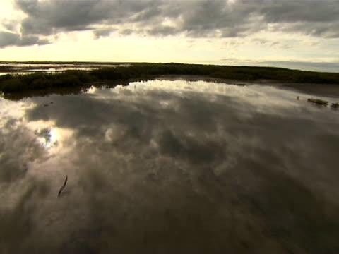 vidéos et rushes de aerial over wetlands - 50 secondes et plus