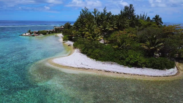 aerial: palm trees and vacation huts on a small island in the tropical ocean in the french polynesia - moorea, french polynesia - moorea stock videos & royalty-free footage