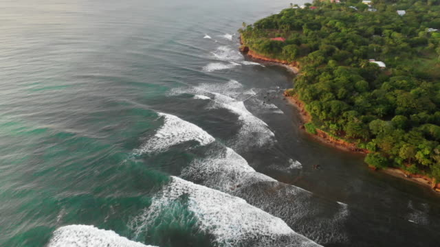 vídeos y material grabado en eventos de stock de aerial pan down: waves by forest covered island surrounded by bright blue ocean - little corn island, nicaragua - nicaragua