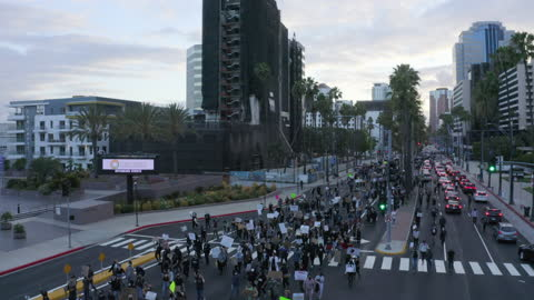 vidéos et rushes de aerial pan: huge crowd of protesters marches with signs down major city street under tall palm trees near boarded stores - long beach, california - injustice