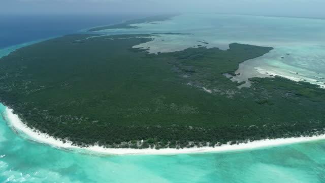 vídeos y material grabado en eventos de stock de aerial pan right over aldabra atoll, seychelles - cnidario