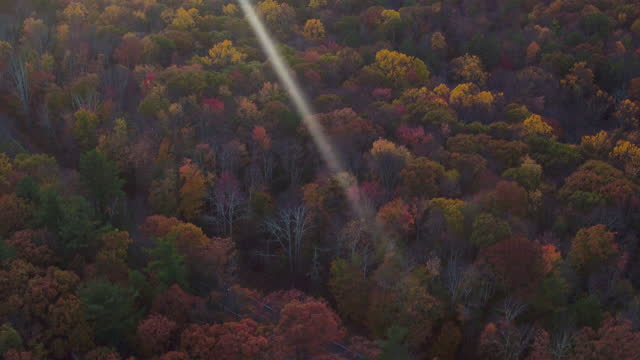 aerial pan up from looking directly down on mountains, beautiful leaf colors on trees - ulster county stock videos & royalty-free footage