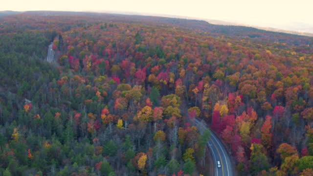 aerial pan up from road with cars in the mountains, beautiful leaf colors on trees - ulster county stock videos & royalty-free footage