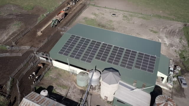 aerial pan up: solar panels on farm building on grassy plain, queensland, australia - cow stock videos & royalty-free footage