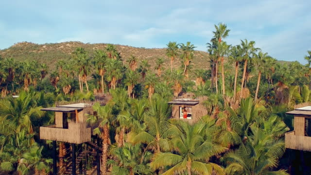 Aerial Pan: Woman in Hut with Palm Trees in Los Cabos Mexico