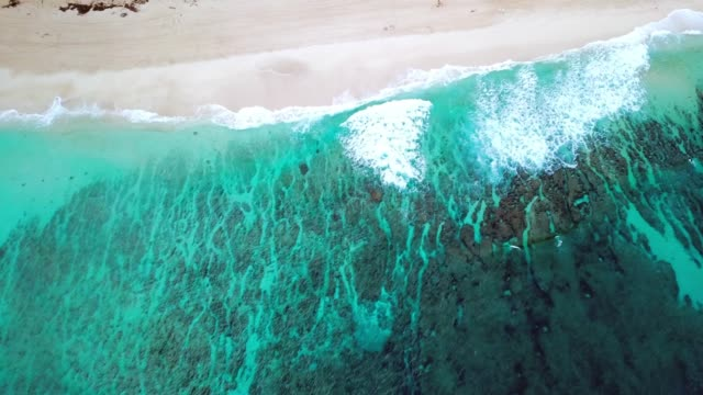 aerial: panning above ocean to sandy beach & beachfront buildings - パン効果点の映像素材/bロール
