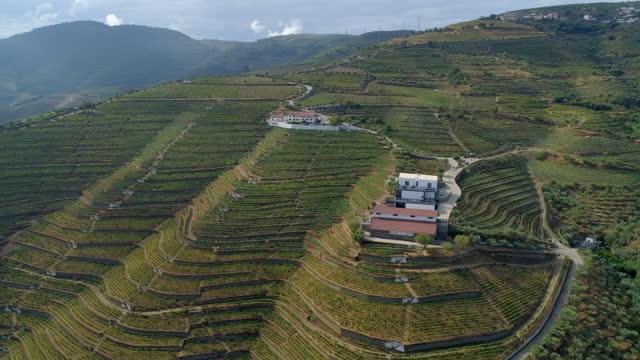 vídeos de stock e filmes b-roll de aerial panning ascending shot of winery structures amidst green landscape over mountains against cloudy sky - porto, portugal - cena não urbana