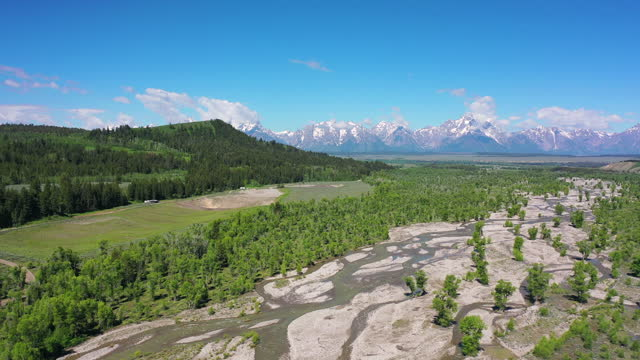 aerial panning shot of green trees by river flowing at national park, drone flying over forest near mountains against sky on sunny day - grand teton national park, wyoming - grand teton national park stock videos & royalty-free footage